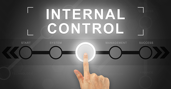 Internal Controls and Audit