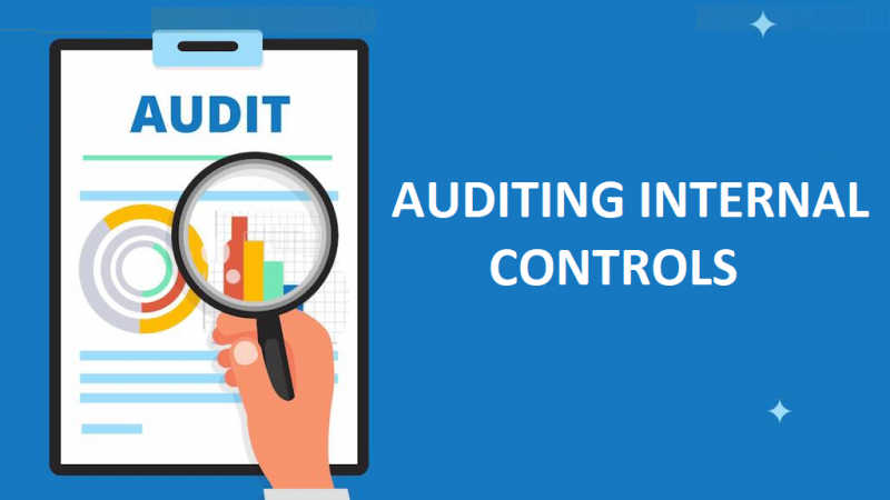 Auditing Internal Controls